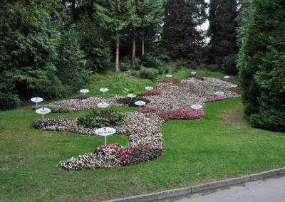 PWV-Burrweiler_Ausflug-Mainau-2015-Blumen